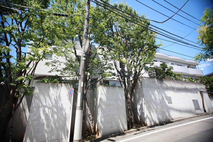 Shimokitazawa House
